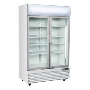 BLIZZARD GDF1000H: Double Door Display Freezer